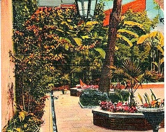 Vintage New Orleans Postcard - Courtyard and Garden at the Patio Royal (Unused)