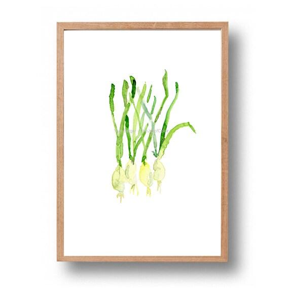Fr hlingszwiebeln kunstdruck k che kunst aquarell von for Minimalistisch essen