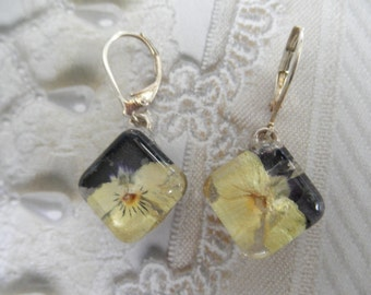 Rich, Deep Purple & Soft Yellow Pansy Pressed Flower Glass Squared Domed Earrings-Symbolizes Loyalty-Nature's Wearable Art-Gifts Under 25