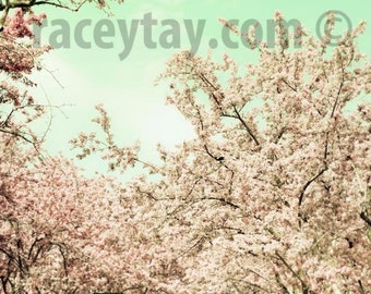 Cherry Tree Prints, Peach, Mint, Pastel, Baby Girl Nursery Decor, Mint Green, Girls Room Wall Art, Pastel Flowers