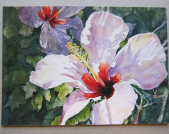 Hibiscus Art ACEO Watercolor Print 692 Radiant Light Florida Flowers Red White watercolorsNmore