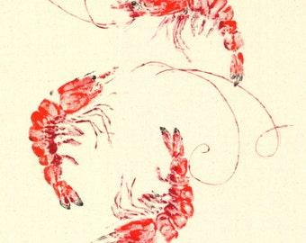 BAY SHRIMP Gyotaku Fish Print