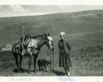 "Vintage Photo ""Chenook and Mable"" Horse Farm Animal Snapshot Antique Photo Black & White Photograph Found Paper Ephemera Vernacular - 29"