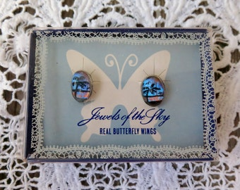 Vintage Earrings Real Butterfly Wings Handpainted Palm Trees Screw Backs Silver Tone In Original Box 1950 Souvenir