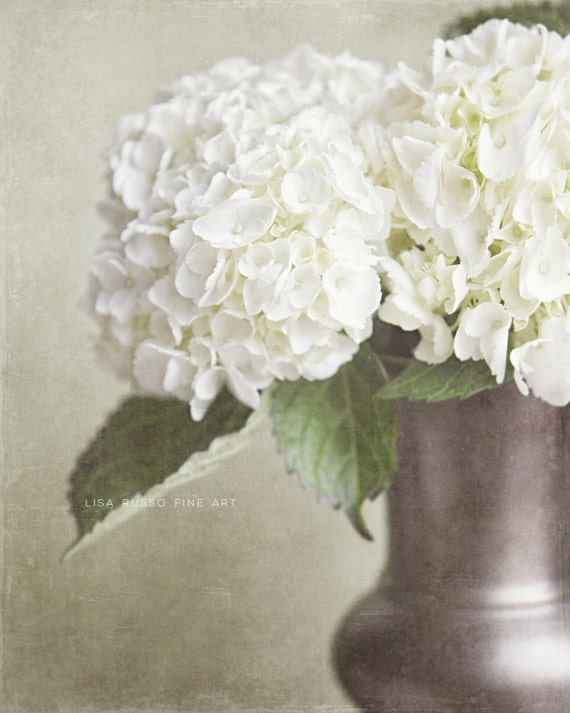 Shabby Chic Wall Decor Rustic Home Print Or Canvas Wrap Hydrangea Photograph Cottage