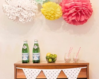 Lucille Collection - 5 Pom poms- Craft show booth decoration/ baby shower hanging decoraiton/ nursery mobile/ party decoration
