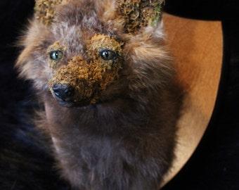Mutation Natural Moss Fox Shoulder Mount- Cross Fox Oddity Weird Rogue Taxidermy