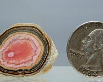 Rhodochrosite Stalactite Slice 96 carats Polished Cabochon Stalagmite 33 mm Fine Grade Quality Freeform Gemstone