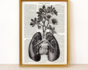 Anatomical lungs and branches on vintage book page - archival digital art print