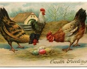 Barnyard Chickens and Easter Eggs Digital Download Printable Art Graphic Image