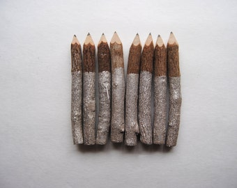 Twig Pencils Dipped in Metallic Champagne - Set of Eight