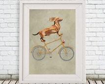 Daschund Print, daschund Illustration Art Poster Acrylic Painting Kids Decor Drawing Gift, Dog on bicycle, bicycle print