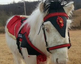 71 best MINIATURE HORSE COSTUMES images on Pinterest ...   Mini Horse Costume