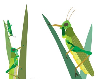 Grasshoppers (4x4)