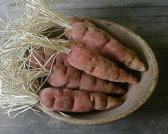 Pattern: Primitive Carrot created by Melanee Herrera