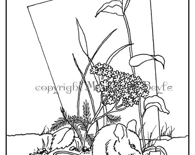 COLORING PAGE - MOUSE; digital download, wildlife, from an original drawing, pen and ink,