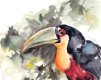 Toucan bird  painting, ORIGINAL Watercolor Painting, tropical bird, bird art, painting of bird, watercolor art