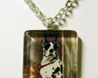 Harlequin great dane pendant and chain - DGP01-067