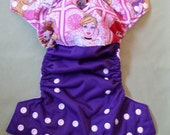 One Size Pocket Cloth Diaper - Disney Princess