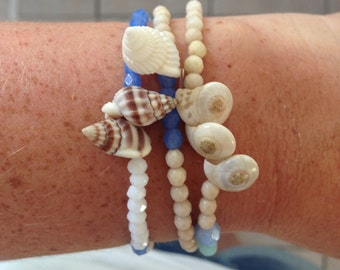 Shell Bracelets-Bald Head