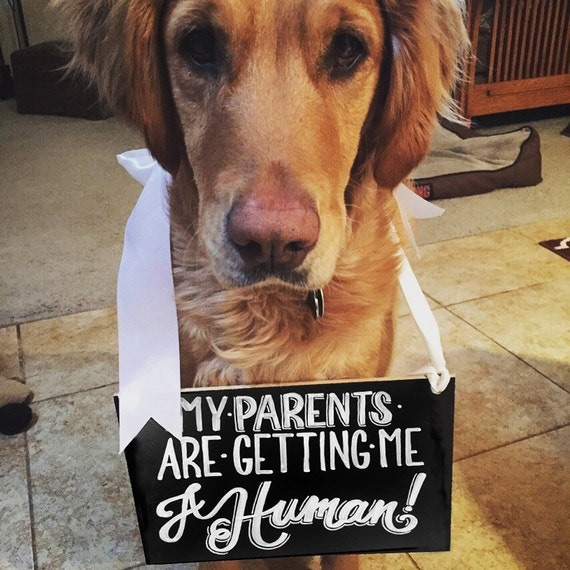 FREE SHIPPING - My Parents are Getting Me a Human Baby Announcement Sign, Having A Baby, Dog Sign, Baby Announcement, Custom Chalkboard