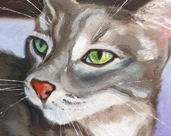 Finn Again, 6x6, Oil Painting, by Renee Brennan, Cat Portrait, Green Eyes, Pet Portrait, Grey Cat, Furry Friend, Pet Painting