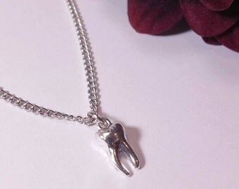 Silver necklace with a pendant in the shape of tooth