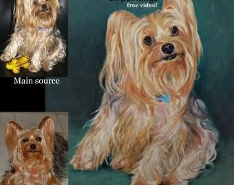 Custom Dog portrait, Pet portrait, Dog Painting -oil painting, Yorkshire Terrier sample on canvas ***Lowest price is 50% DEPOSIT price***