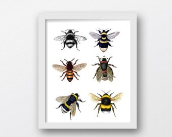 Honey Bees, Bumble Bee, Collage of Bees, Digital Download Print,Printable Art, Downloadable Photography, Printable Art, Download Art Prints,