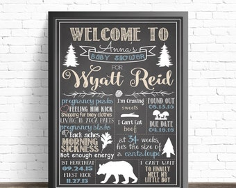 Baby Shower Woodland Animals Chalkboard Sign / Printable Poster / Rustic Shower Decorations / Woodland Creatures / Forest Animals