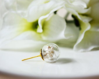 Orb / earring / white / Real Flower Jewelry, Natural Dried Flower, botanical jewelry, terrarium jewelry, plant earring, gift for her