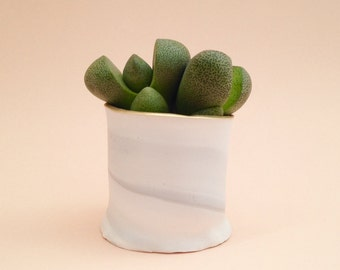 Handmade mini clay marbled pot with succulent