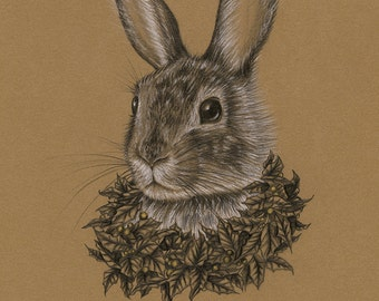 The Winter King Rabbit (Part of the Keepers of the Seasons series) Original drawing