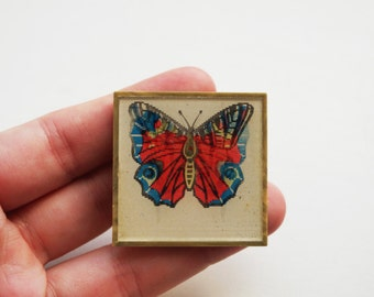 Vintage (4 cm) 1.57'' butterfly insect bug brooch badge token clasp pinion pin button cordon band medallion pinback nature