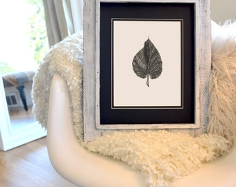 "Leaf Freehand Ink Drawing Limited Edition Print by Calista Renee, Signed, Numbered, choose 8"" x 8"" OR  8"" x 10"""
