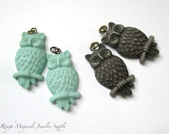 Owl Pendants, Choose Dark Gray Taupe, Pastel Mint Green, 30mm Owls, Acrylic Charms Woodland Owls Nature & Bird Themes - 2 Pieces   SP651