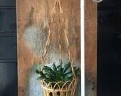 Vintage Hanging Planter Basket