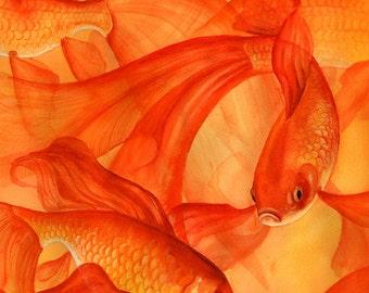 Goldfish Art, Goldfish Watercolor Print, Goldrush Fish Painting Ocean Sea Life Wall Art, Orange Gold Fish Print Art, Under the Sea