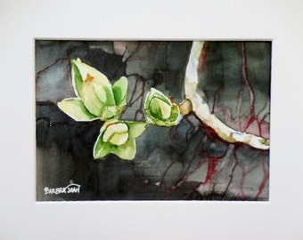 Original watercolor, Jade plant,
