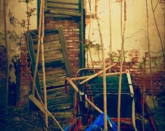 Abandon Garden