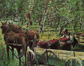 Antique Apple Harvest Print Lithograph c1860s Nova Scotia ACADIAN 60s Canada Listed Artist Forrestall Large Art Litho Prop Home Decor Gift