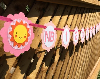 Girly Sunshine First Year Photo Banner | Sunshine first Year Banner | Girly Sunshine Party Decor | Girly Sunshine Party Banner