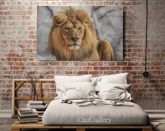 Lion Photography, Canvas Gallery Wrap - Ready to Hang, Wildlife Art, Lion Wall Art, Lion Close Up, Man Cave, Nursery Decor, 30x40 Canvas