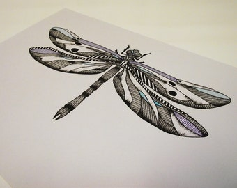 A4 Dragonfly Illustration