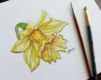 PRINT ~ Watercolour Daffodil, A4 size (21cm x 29.7cm)