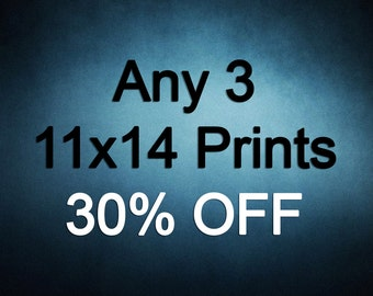 11x14 Prints - Choose any 3 ColorPopPhotoShop Fine Art Photographs