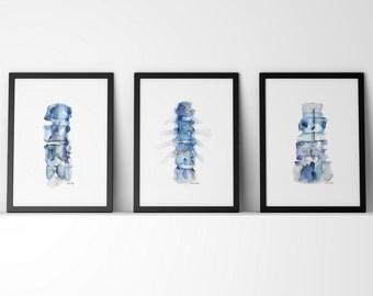 Blue Spine Print Series of 3 - Anatomy Art Set - 3 Watercolor Prints