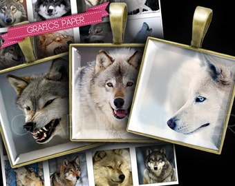 Square Images Wolf  1x1 inch and 30mm 25mm 20mm size Printables for Scrapbooking, Pendants Digital Collage Sheet Instant Download QD63