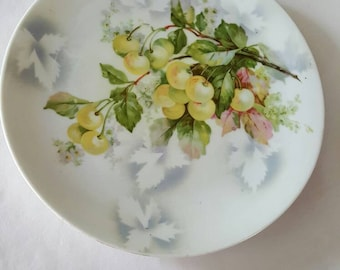 Charming vintage hand painted plate