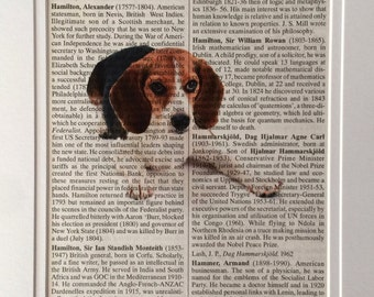 Beagle Dog Book Print -  Recycled Vintage Dictionary Page, Home Decor, Poster, Art, Animal Lover